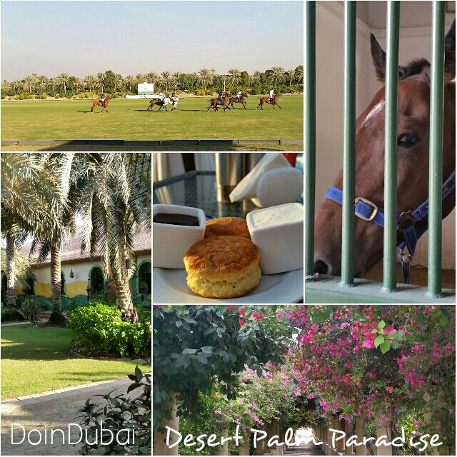 Polo grounds, restaurants and a spa at Desert Palm Dubai