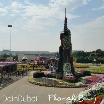 Miracle_Garden_Dubai