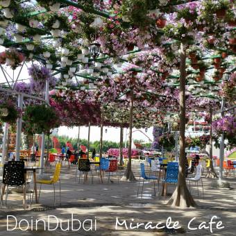 Miracle_Garden_Cafe