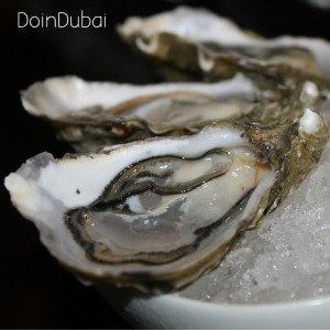 Four Seasons Sea Fu Oyster Eye DID 800