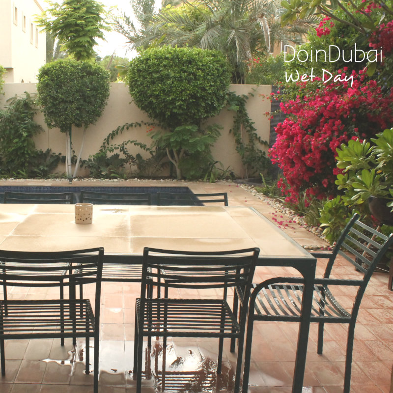 Gardening-In-Dubai-Wet-Day-.jpg
