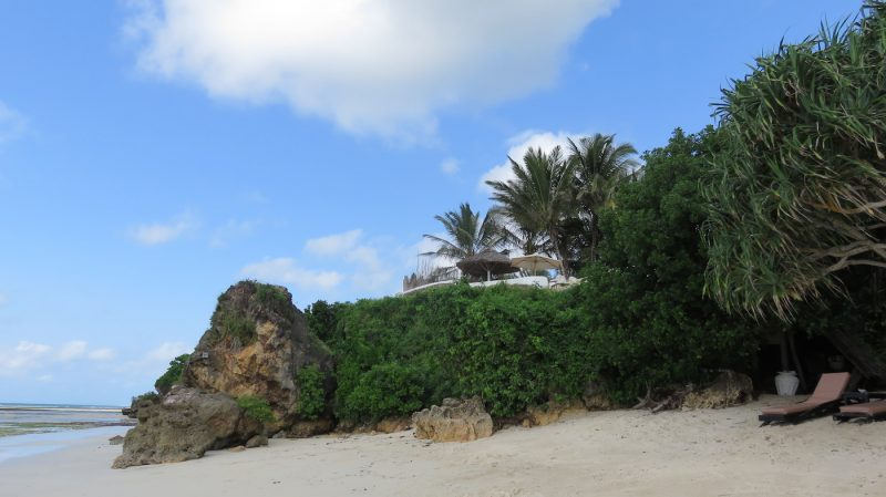 Image of beach at Msambweni House