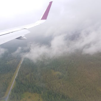 Image ofExploring Norway DoinDubai Airline view forest