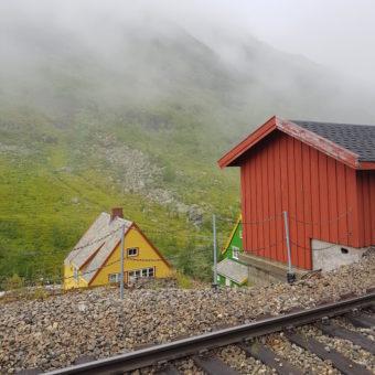 Image ofExploring Norway DoinDubai train to Flam