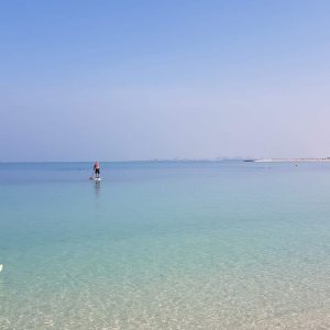 STAND UP PADDLE BOARDING IN DUBAI DOINDUBAI PADDLING OUT TO SEA