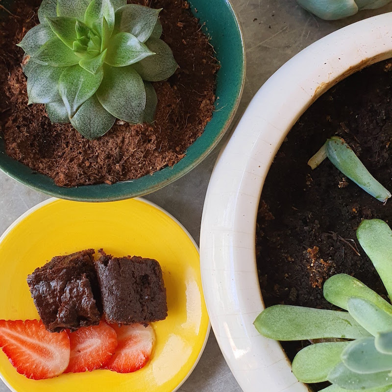 Chocolate brownies no flour or nuts DoinDubai with strawberry slices